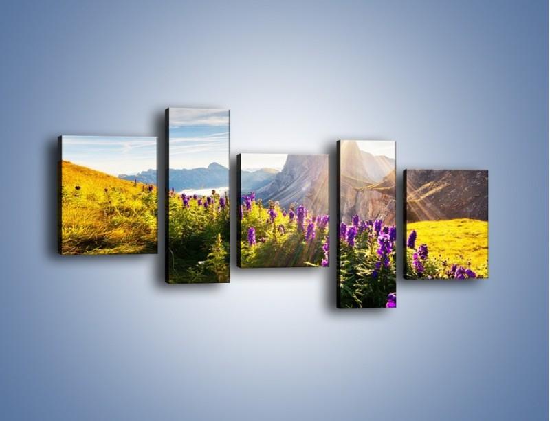 Obraz na płótnie – Góry w poświacie słońca – pięcioczęściowy KN502W7