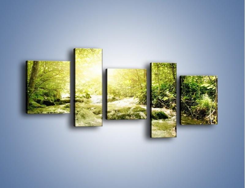 Obraz na płótnie – Wzburzony potok leśny – pięcioczęściowy KN508W7