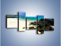 Obraz na płótnie – Czarne kamienie i biała plaża – pięcioczęściowy KN527W7