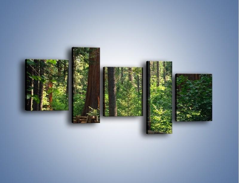 Obraz na płótnie – Chodźmy do lasu – pięcioczęściowy KN611W7