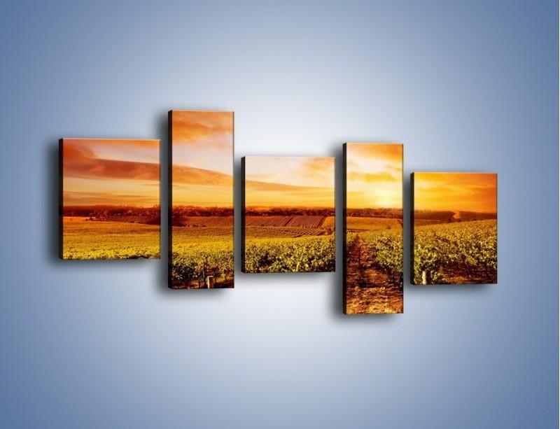Obraz na płótnie – Ziemia i uprawy – pięcioczęściowy KN673W7