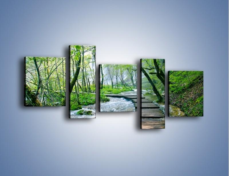 Obraz na płótnie – Drewniana kładką przez potok – pięcioczęściowy KN720W7