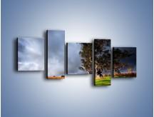 Obraz na płótnie – Burzowe chmury nad polaną – pięcioczęściowy KN748W7
