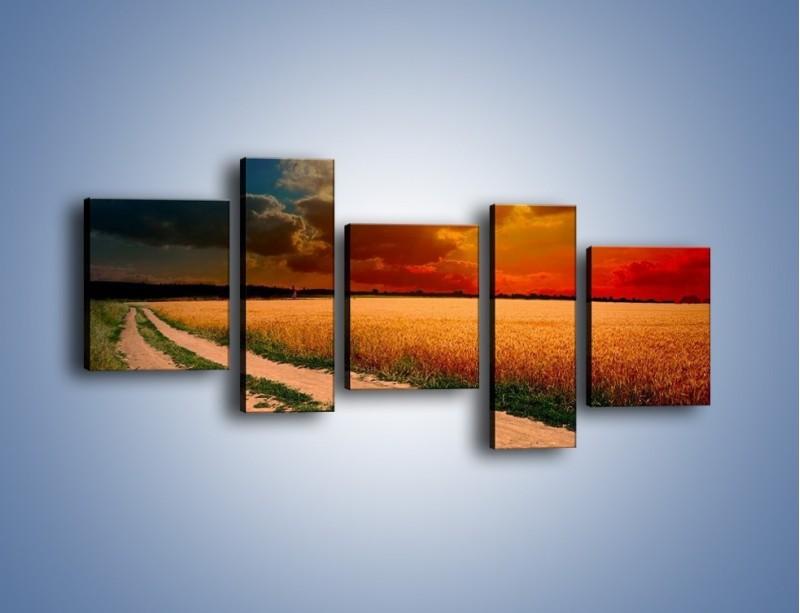 Obraz na płótnie – Zbożowa polana i jej cały urok – pięcioczęściowy KN776W7