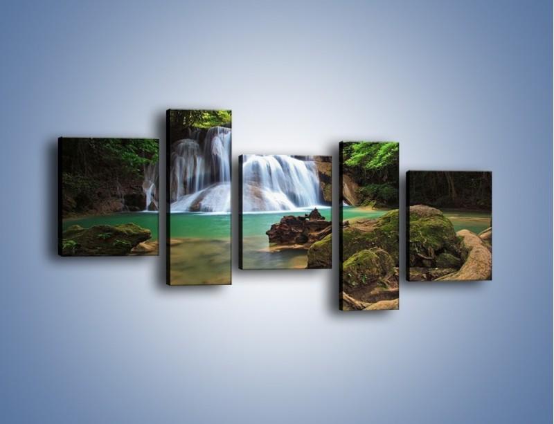 Obraz na płótnie – Drzewa schowane za wodospadem – pięcioczęściowy KN792W7