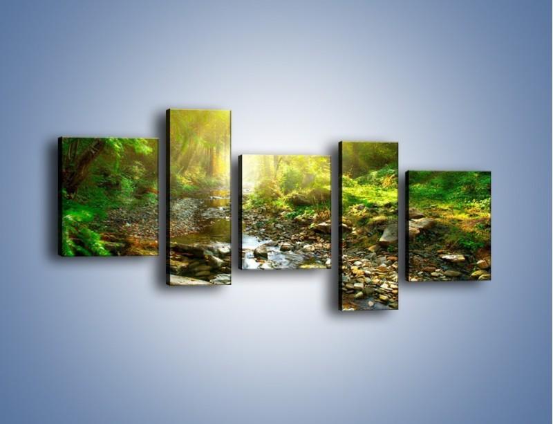 Obraz na płótnie – Kamiennym urwiskiem wśród potoku – pięcioczęściowy KN827W7