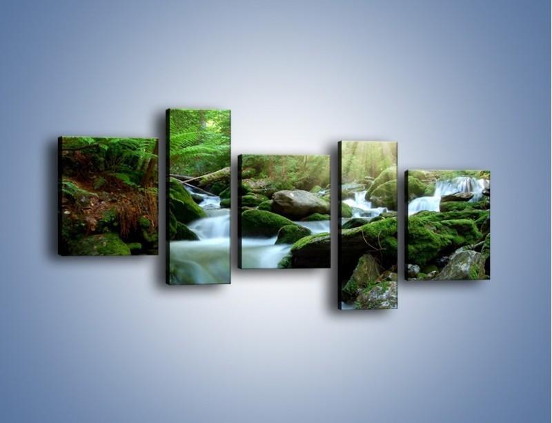 Obraz na płótnie – Silny potok w środku lasu – pięcioczęściowy KN861W7