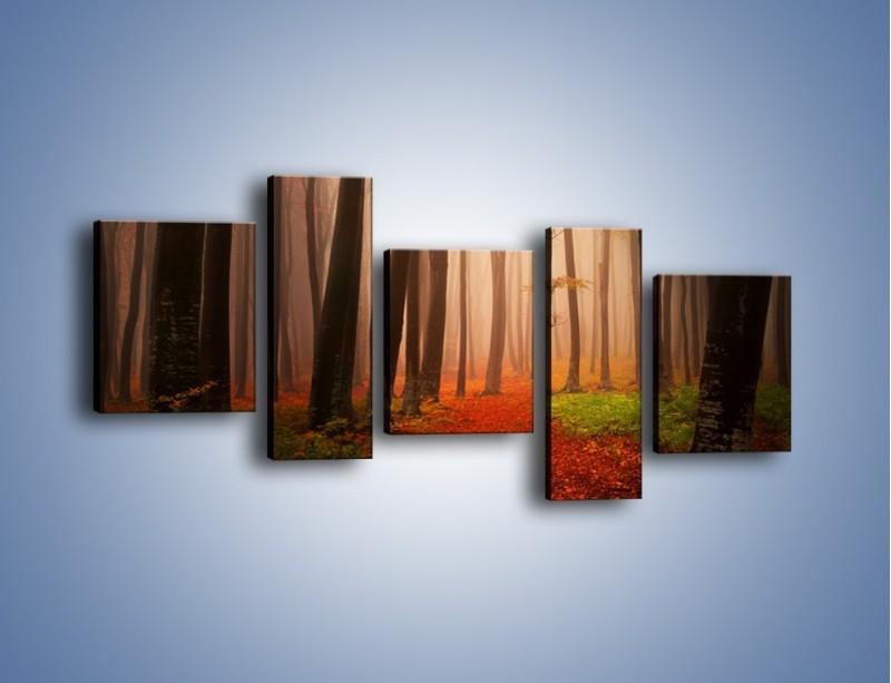 Obraz na płótnie – Las pełen tajemnic – pięcioczęściowy KN909W7