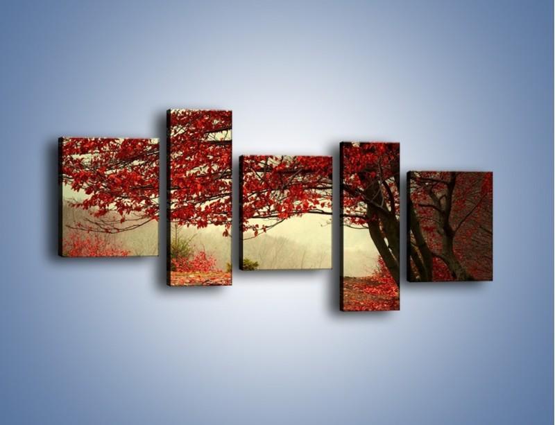 Obraz na płótnie – Spadające liście z drzew – pięcioczęściowy KN910W7