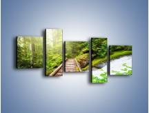 Obraz na płótnie – Bezpieczna droga przez las – pięcioczęściowy KN922W7