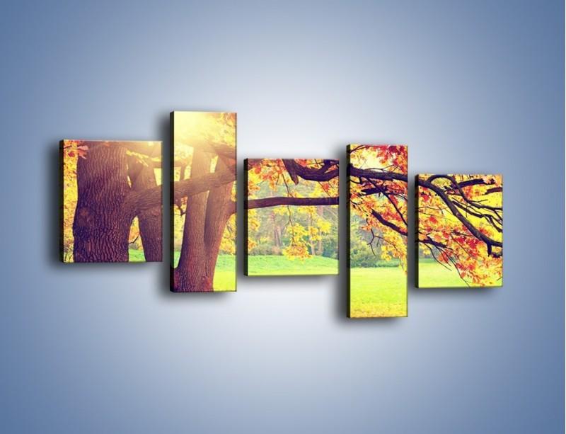Obraz na płótnie – Jesienią w parku też jest pięknie – pięcioczęściowy KN967W7