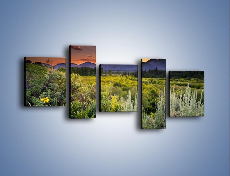Obraz na płótnie – Wieczorny spokój na polanie – pięcioczęściowy KN987W7