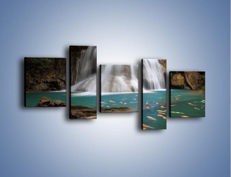 Obraz na płótnie – Wodospad i kolorowe rybki – pięcioczęściowy KN994W7