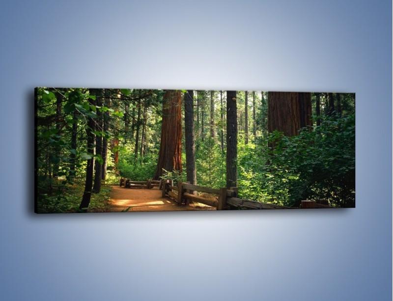 Obraz na płótnie – Chodźmy do lasu – jednoczęściowy panoramiczny KN611