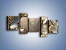 Obraz na płótnie – Miłość do muszli i morza – pięcioczęściowy O132W7
