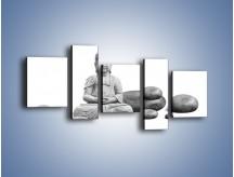 Obraz na płótnie – Budda wśród kamieni – pięcioczęściowy O229W7