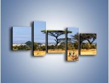 Obraz na płótnie – Antylopy w słonecznej afryce – pięcioczęściowy Z003W7