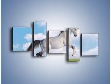 Obraz na płótnie – Białe obłoki i koń – pięcioczęściowy Z019W7