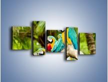 Obraz na płótnie – Kolorowe papugi w szeregu – pięcioczęściowy Z029W7