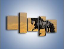 Obraz na płótnie – Bieg z koniem po polanie – pięcioczęściowy Z057W7