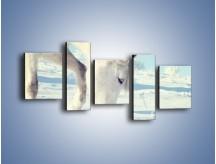 Obraz na płótnie – Arab w śnieżnym puchu – pięcioczęściowy Z144W7
