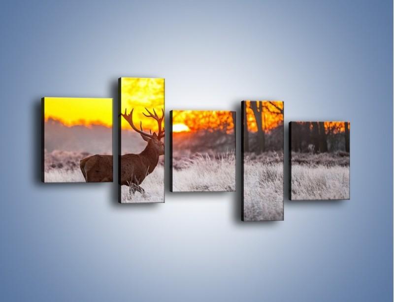 Obraz na płótnie – Jeleń o zachodzie słońca – pięcioczęściowy Z164W7