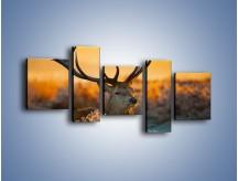 Obraz na płótnie – Ciężkie poroże jelenia – pięcioczęściowy Z165W7