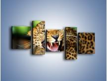 Obraz na płótnie – Jaguar z pazurem – pięcioczęściowy Z184W7