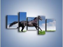 Obraz na płótnie – Dziki koń w biegu – pięcioczęściowy Z194W7