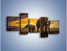 Obraz na płótnie – Ciekawość małego słonika – pięcioczęściowy Z212W7