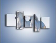 Obraz na płótnie – Gonitwa konna w bieli – pięcioczęściowy Z240W7