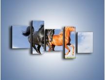 Obraz na płótnie – Czarny rudy i koń – pięcioczęściowy Z241W7