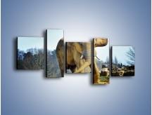 Obraz na płótnie – Ciężkie życie słonia – pięcioczęściowy Z273W7