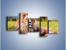 Obraz na płótnie – Dostojny lew na sawannie – pięcioczęściowy Z282W7