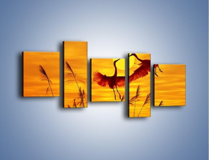 Obraz na płótnie – Czaple i zachód słońca – pięcioczęściowy Z302W7