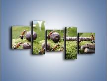 Obraz na płótnie – Ciężka praca mrówek – pięcioczęściowy Z308W7