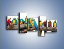 Obraz na płótnie – Kolorowe stado papug – pięcioczęściowy Z326W7