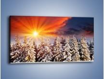 Obraz na płótnie – Choinki w środku zimy – jednoczęściowy panoramiczny KN682