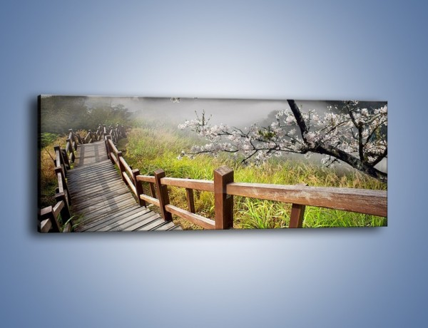 Obraz na płótnie – Drzewo wiśni i kręte schody – jednoczęściowy panoramiczny KN698