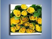 Obraz na płótnie – Wiosenny uśmiech w różach – jednoczęściowy kwadratowy K379