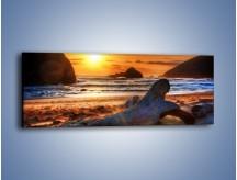 Obraz na płótnie – Urok plaży o zachodzie słońca – jednoczęściowy panoramiczny KN757