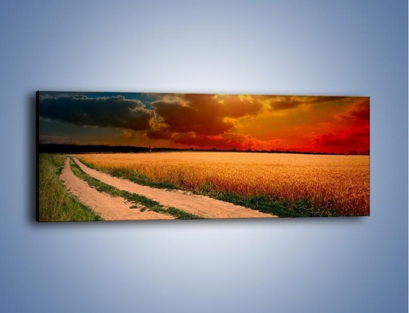Obraz na płótnie – Zbożowa polana i jej cały urok – jednoczęściowy panoramiczny KN776