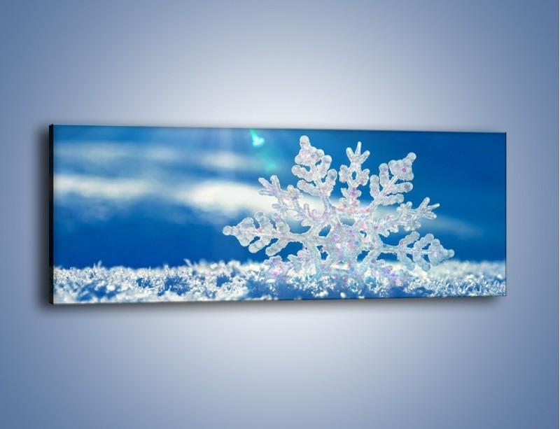 Obraz na płótnie – Diamentowa śnieżynka – jednoczęściowy panoramiczny KN808