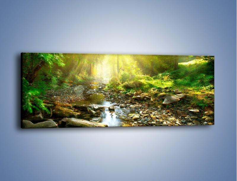 Obraz na płótnie – Kamiennym urwiskiem wśród potoku – jednoczęściowy panoramiczny KN827