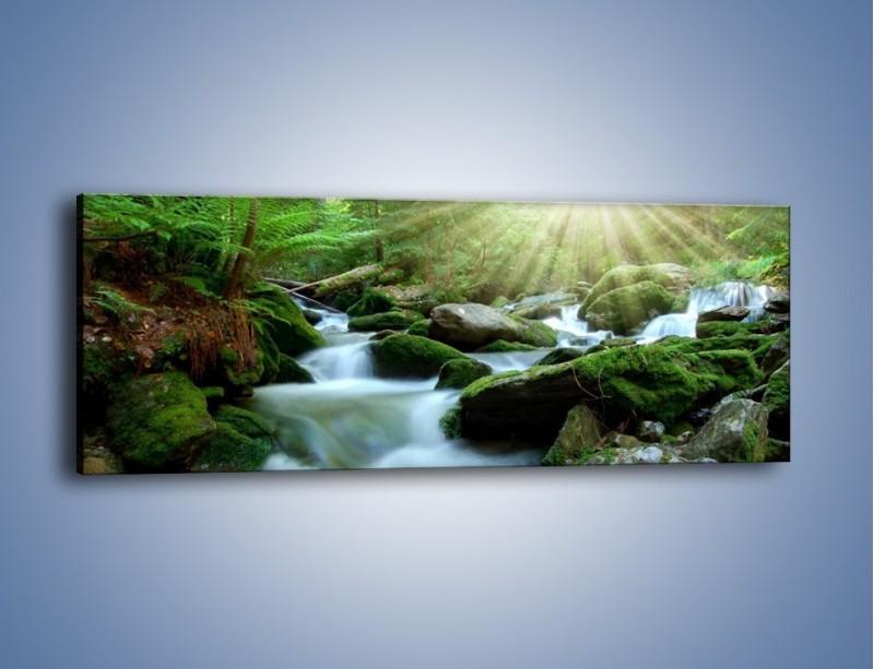 Obraz na płótnie – Silny potok w środku lasu – jednoczęściowy panoramiczny KN861