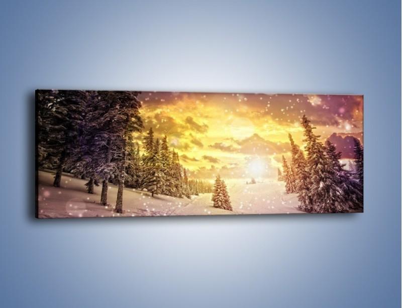 Obraz na płótnie – Śnieżna kraina – jednoczęściowy panoramiczny KN868
