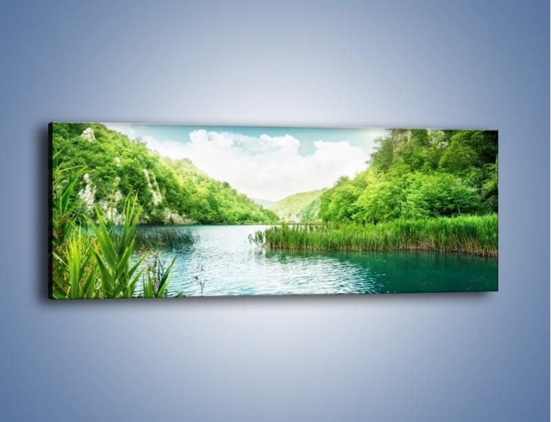 Obraz na płótnie – Wodnym śladem wśród zieleni – jednoczęściowy panoramiczny KN884