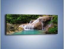 Obraz na płótnie – Z rybą w stronę wodospadu – jednoczęściowy panoramiczny KN932