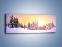 Obraz na płótnie – Choinki zatopione w śniegu – jednoczęściowy panoramiczny KN940