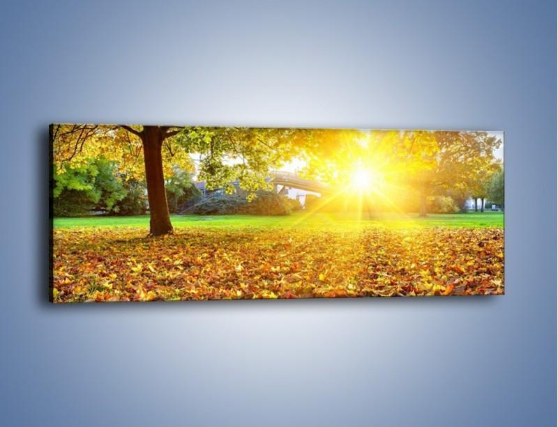 Obraz na płótnie – Poszukajmy idealnego liścia – jednoczęściowy panoramiczny KN946